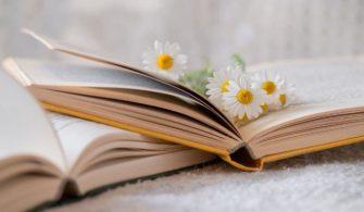 edebiyat-ve-güzel-sanatlar