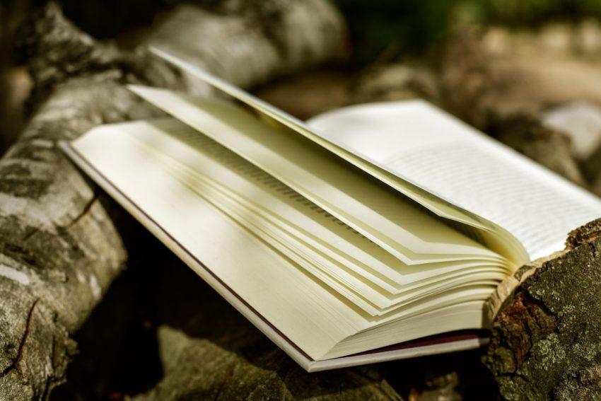 Saf şiir anlayışı